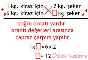 5. Sinif Matematik Dersi Cozumlu Oran Oranti Problemleri - 02