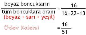 5. Sinif Matematik Dersi Cozumlu Oran Oranti Problemleri - 03