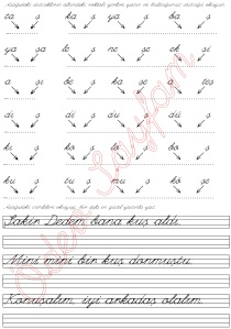 ş sesi hecelerden kelimeler olusturma 4. Grup Harfler 1. Sinif Turkce Dersi Okuma Yazma Etkinlikleri