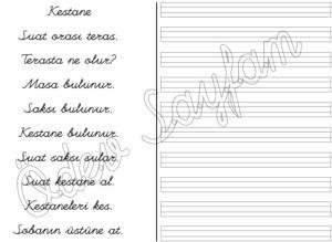 kestane-okuma-calismasi-3-grup-sesler-s-harfi-1-sinif-okuma-yazma-ogreniyorum