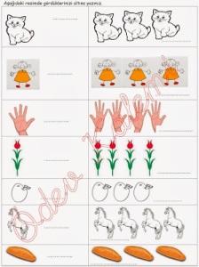 tekil-cogul-etkinligi-2-sinif-turkce-dersi-01
