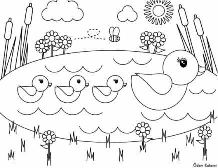 ördek Göl Sazlik Boyama 1 Sinif Görsel Sanatlar Dersi ödev Sayfam